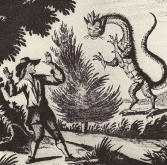 dessin-dun-dragon-dont-on-avait-signalc3a9-lapparition-dans-les-alpes-en-1660